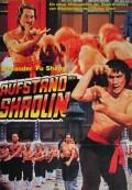 Aufstand der Shaolin