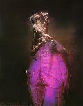 Dunkle Kristall, Der