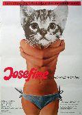 Josefine - das liebestolle Kätzchen