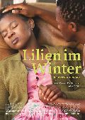 Lilien im Winter