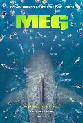 MEG / The MEG