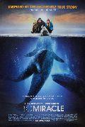 Ruf der Wale