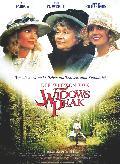 Witwen von Widow Peak, Die